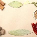 ローリエの葉とは!?その効果や使い方、保存方法は??他にも代用できるって本当?バジル?ピクルス?ローズマリー?